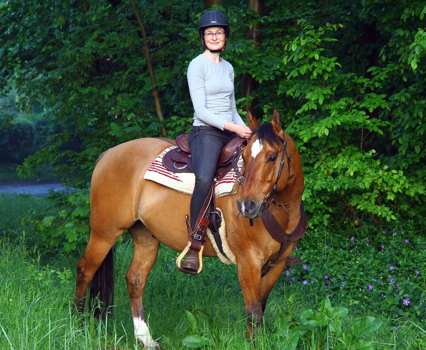 flegelphase beim pferd
